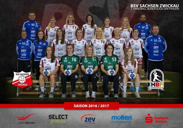 Teamfoto BSV Sachsen Zwickau 2016/17