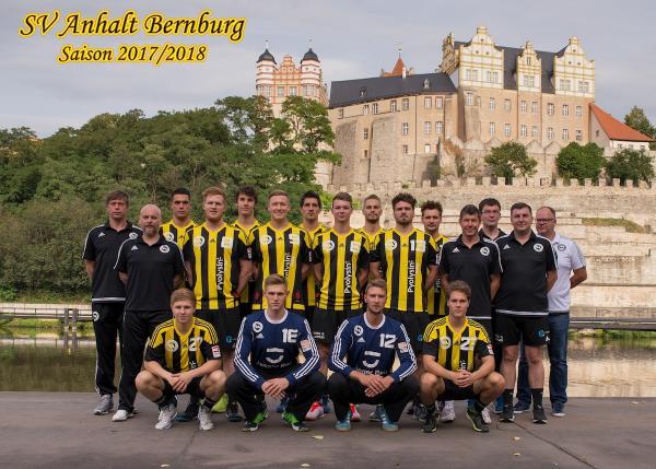 SV Anhalt Bernberg, Mannschaftsfoto 2017/18 3. Liga Ost