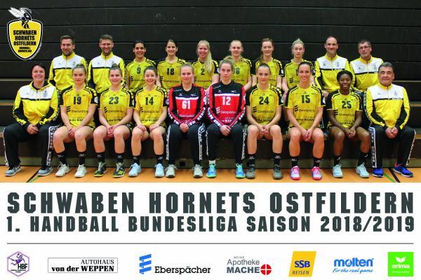 Schwaben Hornets, Team TV Nellingen - neu