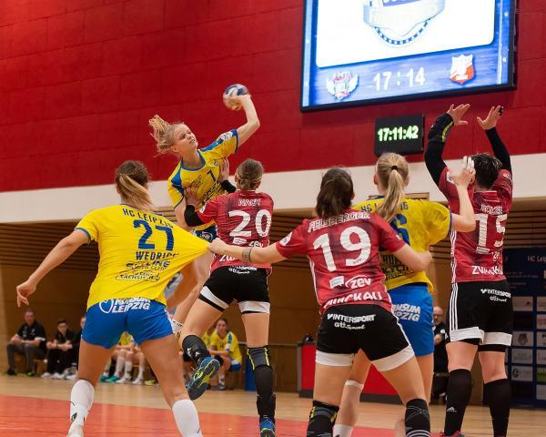 Handball Zwickau