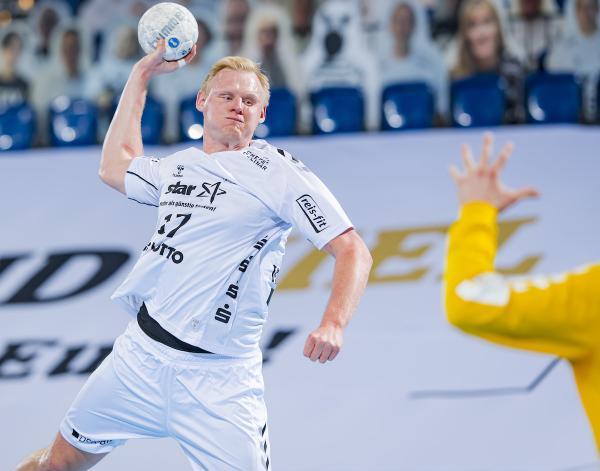 Handball Bundesliga Torschützen